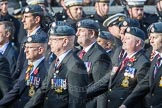 March Past, Remembrance Sunday at the Cenotaph 2016: C29 Harrier Force Association. Cenotaph, Whitehall, London SW1, London, Greater London, United Kingdom, on 13 November 2016 at 12:56, image #1049