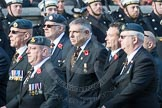 March Past, Remembrance Sunday at the Cenotaph 2016: C30 Royal Air Forces Association Armourers Branch. Cenotaph, Whitehall, London SW1, London, Greater London, United Kingdom, on 13 November 2016 at 12:56, image #1067