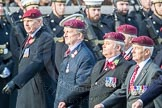 March Past, Remembrance Sunday at the Cenotaph 2016: C31 The Parachute Squadron Royal Armoured. Cenotaph, Whitehall, London SW1, London, Greater London, United Kingdom, on 13 November 2016 at 12:56, image #1073