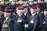 March Past, Remembrance Sunday at the Cenotaph 2016: C31 The Parachute Squadron Royal Armoured. Cenotaph, Whitehall, London SW1, London, Greater London, United Kingdom, on 13 November 2016 at 12:56, image #1076