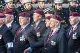 March Past, Remembrance Sunday at the Cenotaph 2016: C31 The Parachute Squadron Royal Armoured. Cenotaph, Whitehall, London SW1, London, Greater London, United Kingdom, on 13 November 2016 at 12:56, image #1077