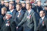 March Past, Remembrance Sunday at the Cenotaph 2016: C33 656 Squadron Association. Cenotaph, Whitehall, London SW1, London, Greater London, United Kingdom, on 13 November 2016 at 12:56, image #1101