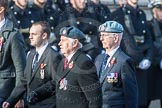 March Past, Remembrance Sunday at the Cenotaph 2016: C33 656 Squadron Association. Cenotaph, Whitehall, London SW1, London, Greater London, United Kingdom, on 13 November 2016 at 12:56, image #1103
