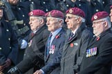 March Past, Remembrance Sunday at the Cenotaph 2016: C35 Airborne Engineers Association 2. Cenotaph, Whitehall, London SW1, London, Greater London, United Kingdom, on 13 November 2016 at 12:56, image #1113