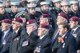 March Past, Remembrance Sunday at the Cenotaph 2016: C35 Airborne Engineers Association 2. Cenotaph, Whitehall, London SW1, London, Greater London, United Kingdom, on 13 November 2016 at 12:56, image #1115