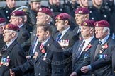 March Past, Remembrance Sunday at the Cenotaph 2016: C35 Airborne Engineers Association 2. Cenotaph, Whitehall, London SW1, London, Greater London, United Kingdom, on 13 November 2016 at 12:56, image #1116