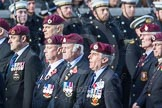 March Past, Remembrance Sunday at the Cenotaph 2016: C35 Airborne Engineers Association 2. Cenotaph, Whitehall, London SW1, London, Greater London, United Kingdom, on 13 November 2016 at 12:57, image #1118