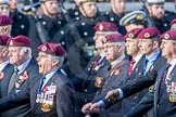 March Past, Remembrance Sunday at the Cenotaph 2016: C35 Airborne Engineers Association 2. Cenotaph, Whitehall, London SW1, London, Greater London, United Kingdom, on 13 November 2016 at 12:57, image #1119