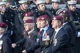 March Past, Remembrance Sunday at the Cenotaph 2016: C35 Airborne Engineers Association 2. Cenotaph, Whitehall, London SW1, London, Greater London, United Kingdom, on 13 November 2016 at 12:57, image #1120