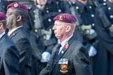 March Past, Remembrance Sunday at the Cenotaph 2016: C35 Airborne Engineers Association 2. Cenotaph, Whitehall, London SW1, London, Greater London, United Kingdom, on 13 November 2016 at 12:57, image #1122