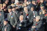 March Past, Remembrance Sunday at the Cenotaph 2016: F01 Blind Veterans UK. Cenotaph, Whitehall, London SW1, London, Greater London, United Kingdom, on 13 November 2016 at 12:58, image #1218