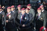 March Past, Remembrance Sunday at the Cenotaph 2016: D01 The Parachute Regimental Association. Cenotaph, Whitehall, London SW1, London, Greater London, United Kingdom, on 13 November 2016 at 12:58, image #1247