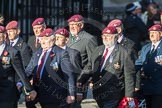 March Past, Remembrance Sunday at the Cenotaph 2016: D01 The Parachute Regimental Association. Cenotaph, Whitehall, London SW1, London, Greater London, United Kingdom, on 13 November 2016 at 12:58, image #1248
