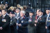 March Past, Remembrance Sunday at the Cenotaph 2016: D03 REME Association. Cenotaph, Whitehall, London SW1, London, Greater London, United Kingdom, on 13 November 2016 at 12:59, image #1276