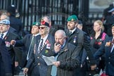 March Past, Remembrance Sunday at the Cenotaph 2016: D05 Not Forgotten Association. Cenotaph, Whitehall, London SW1, London, Greater London, United Kingdom, on 13 November 2016 at 12:59, image #1290