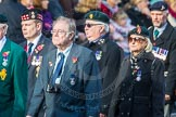 March Past, Remembrance Sunday at the Cenotaph 2016: D08 Army Dog Unit Northern Ireland Association. Cenotaph, Whitehall, London SW1, London, Greater London, United Kingdom, on 13 November 2016 at 12:59, image #1321