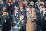 March Past, Remembrance Sunday at the Cenotaph 2016: D08 Army Dog Unit Northern Ireland Association. Cenotaph, Whitehall, London SW1, London, Greater London, United Kingdom, on 13 November 2016 at 12:59, image #1323