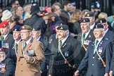 March Past, Remembrance Sunday at the Cenotaph 2016: D08 Army Dog Unit Northern Ireland Association. Cenotaph, Whitehall, London SW1, London, Greater London, United Kingdom, on 13 November 2016 at 12:59, image #1326