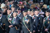 March Past, Remembrance Sunday at the Cenotaph 2016: D08 Army Dog Unit Northern Ireland Association. Cenotaph, Whitehall, London SW1, London, Greater London, United Kingdom, on 13 November 2016 at 12:59, image #1327