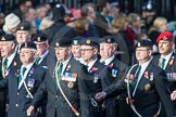 March Past, Remembrance Sunday at the Cenotaph 2016: D08 Army Dog Unit Northern Ireland Association. Cenotaph, Whitehall, London SW1, London, Greater London, United Kingdom, on 13 November 2016 at 12:59, image #1328