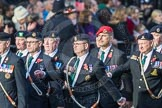 March Past, Remembrance Sunday at the Cenotaph 2016: D08 Army Dog Unit Northern Ireland Association. Cenotaph, Whitehall, London SW1, London, Greater London, United Kingdom, on 13 November 2016 at 13:00, image #1329