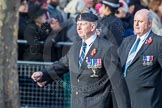 March Past, Remembrance Sunday at the Cenotaph 2016: D09 Northern Ireland Veterans' Association. Cenotaph, Whitehall, London SW1, London, Greater London, United Kingdom, on 13 November 2016 at 13:00, image #1333
