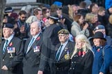 March Past, Remembrance Sunday at the Cenotaph 2016: D09 Northern Ireland Veterans' Association. Cenotaph, Whitehall, London SW1, London, Greater London, United Kingdom, on 13 November 2016 at 13:00, image #1334