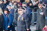 March Past, Remembrance Sunday at the Cenotaph 2016: D09 Northern Ireland Veterans' Association. Cenotaph, Whitehall, London SW1, London, Greater London, United Kingdom, on 13 November 2016 at 13:00, image #1335
