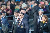 March Past, Remembrance Sunday at the Cenotaph 2016: D09 Northern Ireland Veterans' Association. Cenotaph, Whitehall, London SW1, London, Greater London, United Kingdom, on 13 November 2016 at 13:00, image #1337