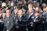 March Past, Remembrance Sunday at the Cenotaph 2016: D10 South Atlantic Medal Association. Cenotaph, Whitehall, London SW1, London, Greater London, United Kingdom, on 13 November 2016 at 13:00, image #1369