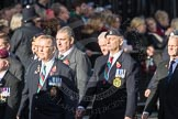 March Past, Remembrance Sunday at the Cenotaph 2016: D10 South Atlantic Medal Association. Cenotaph, Whitehall, London SW1, London, Greater London, United Kingdom, on 13 November 2016 at 13:00, image #1371