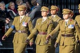March Past, Remembrance Sunday at the Cenotaph 2016: D12 First Aid Nursing Yeomanry (Princess Royal's Volunteers Corps). Cenotaph, Whitehall, London SW1, London, Greater London, United Kingdom, on 13 November 2016 at 13:00, image #1388