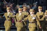 March Past, Remembrance Sunday at the Cenotaph 2016: D12 First Aid Nursing Yeomanry (Princess Royal's Volunteers Corps). Cenotaph, Whitehall, London SW1, London, Greater London, United Kingdom, on 13 November 2016 at 13:00, image #1389