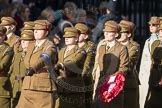 March Past, Remembrance Sunday at the Cenotaph 2016: D12 First Aid Nursing Yeomanry (Princess Royal's Volunteers Corps). Cenotaph, Whitehall, London SW1, London, Greater London, United Kingdom, on 13 November 2016 at 13:00, image #1396