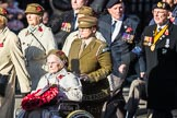 March Past, Remembrance Sunday at the Cenotaph 2016: D13 Association of Jewish Ex-Servicemen & Women. Cenotaph, Whitehall, London SW1, London, Greater London, United Kingdom, on 13 November 2016 at 13:01, image #1407