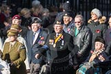 March Past, Remembrance Sunday at the Cenotaph 2016: D13 Association of Jewish Ex-Servicemen & Women. Cenotaph, Whitehall, London SW1, London, Greater London, United Kingdom, on 13 November 2016 at 13:01, image #1409