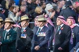 March Past, Remembrance Sunday at the Cenotaph 2016: D19 Trucial Oman Scouts Association. Cenotaph, Whitehall, London SW1, London, Greater London, United Kingdom, on 13 November 2016 at 13:01, image #1458