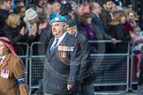 March Past, Remembrance Sunday at the Cenotaph 2016: D20 Bond Van Wapenbroeders 21 D21 Canadian Veterans Association. Cenotaph, Whitehall, London SW1, London, Greater London, United Kingdom, on 13 November 2016 at 13:01, image #1466