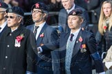 March Past, Remembrance Sunday at the Cenotaph 2016: D22 Hong Kong Ex-Servicemen's Association (HKESA UK Branch). Cenotaph, Whitehall, London SW1, London, Greater London, United Kingdom, on 13 November 2016 at 13:02, image #1490