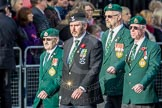 March Past, Remembrance Sunday at the Cenotaph 2016: D24 The Royal British Legion Scotland. Cenotaph, Whitehall, London SW1, London, Greater London, United Kingdom, on 13 November 2016 at 13:02, image #1511