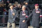 March Past, Remembrance Sunday at the Cenotaph 2016: Polish Ex-Combatants Associationin Great Britain Trust Fund. Cenotaph, Whitehall, London SW1, London, Greater London, United Kingdom, on 13 November 2016 at 13:02, image #1561