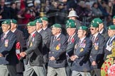 March Past, Remembrance Sunday at the Cenotaph 2016: E01 Royal Marines Association. Cenotaph, Whitehall, London SW1, London, Greater London, United Kingdom, on 13 November 2016 at 13:03, image #1574