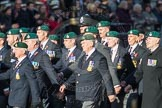 March Past, Remembrance Sunday at the Cenotaph 2016: E01 Royal Marines Association. Cenotaph, Whitehall, London SW1, London, Greater London, United Kingdom, on 13 November 2016 at 13:03, image #1582