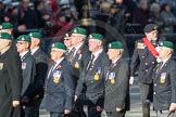 March Past, Remembrance Sunday at the Cenotaph 2016: E02 Royal Naval Association. Cenotaph, Whitehall, London SW1, London, Greater London, United Kingdom, on 13 November 2016 at 13:03, image #1586