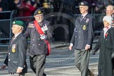 March Past, Remembrance Sunday at the Cenotaph 2016: E02 Royal Naval Association. Cenotaph, Whitehall, London SW1, London, Greater London, United Kingdom, on 13 November 2016 at 13:03, image #1588
