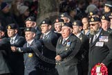 March Past, Remembrance Sunday at the Cenotaph 2016: E15 Type 42 Association. Cenotaph, Whitehall, London SW1, London, Greater London, United Kingdom, on 13 November 2016 at 13:05, image #1740