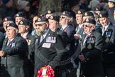 March Past, Remembrance Sunday at the Cenotaph 2016: E15 Type 42 Association. Cenotaph, Whitehall, London SW1, London, Greater London, United Kingdom, on 13 November 2016 at 13:05, image #1742