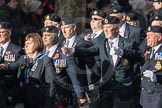 March Past, Remembrance Sunday at the Cenotaph 2016: E15 Type 42 Association. Cenotaph, Whitehall, London SW1, London, Greater London, United Kingdom, on 13 November 2016 at 13:05, image #1749