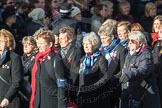 March Past, Remembrance Sunday at the Cenotaph 2016: E17 Association of WRENS. Cenotaph, Whitehall, London SW1, London, Greater London, United Kingdom, on 13 November 2016 at 13:05, image #1768