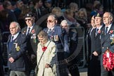 March Past, Remembrance Sunday at the Cenotaph 2016: E19 Royal Naval Communications Association. Cenotaph, Whitehall, London SW1, London, Greater London, United Kingdom, on 13 November 2016 at 13:06, image #1799